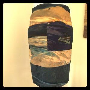 Alexander McQueen Landscape Skirt